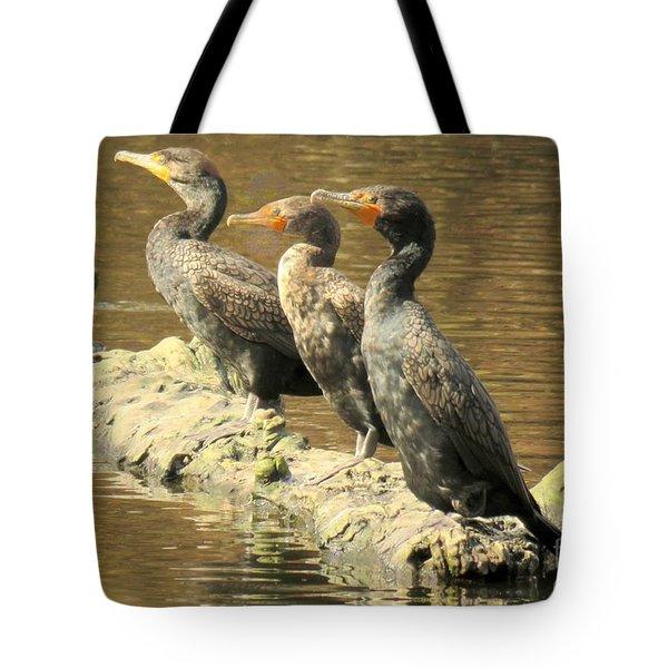 Crested Trio Tote Bag