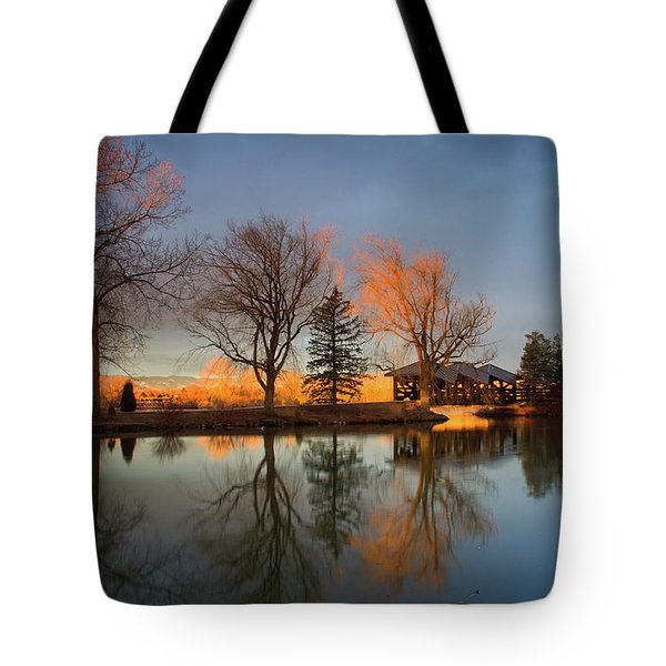 Tote Bag featuring the photograph Cresting Sunlight by John De Bord