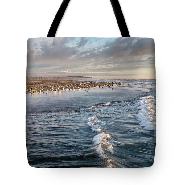 Tote Bag featuring the photograph Crests And Birds by Greg Nyquist