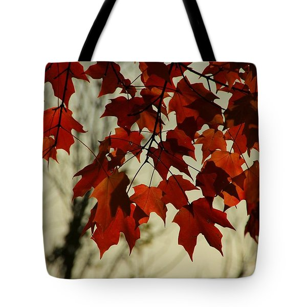 Tote Bag featuring the photograph Crimson Red Autumn Leaves by Chris Berry