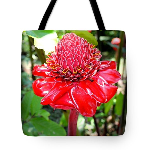 Crimson Bloom Tote Bag