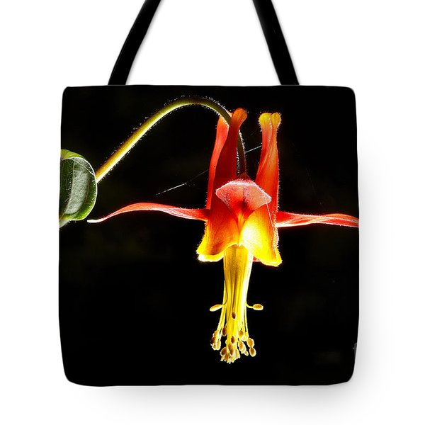 Crimson Columbine Flower Hanging In There Tote Bag by Wernher Krutein