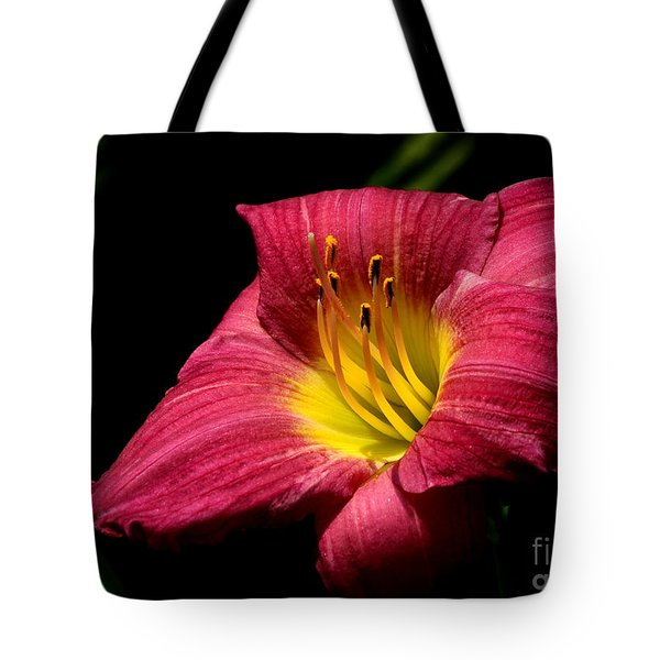 Tote Bag featuring the photograph Crimson Day Lily by Kenny Glotfelty