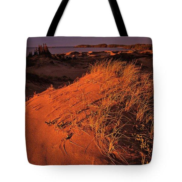 Crimson Dunes Tote Bag