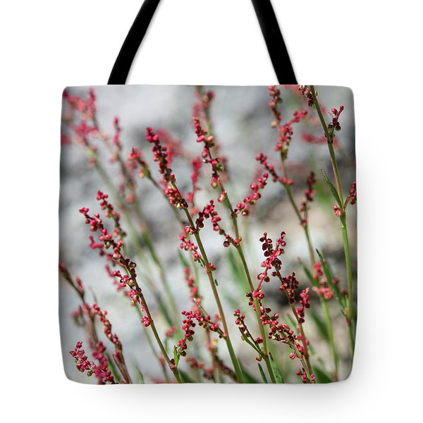 Crimson Field Tote Bag
