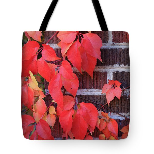 Crimson Leaves Tote Bag
