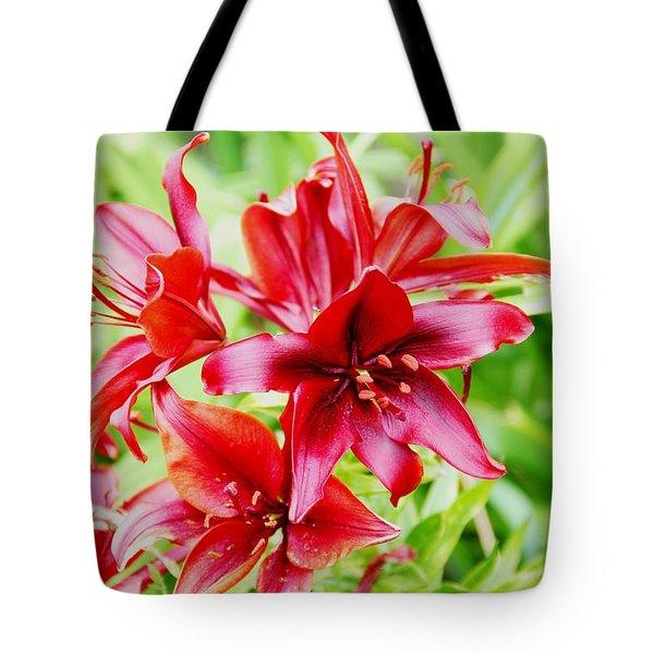 Crimson Lilies Tote Bag