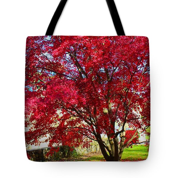 Tote Bag featuring the photograph Crimson Radiance by Polly Castor