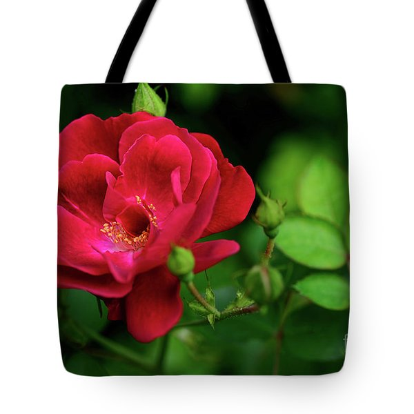 Tote Bag featuring the photograph Crimson Red Rose By Kaye Menner by Kaye Menner