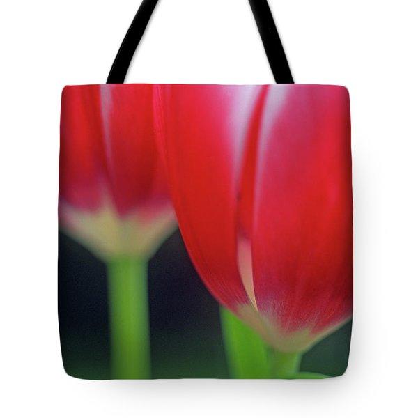 Crimson Tulips Tote Bag by Kathy Yates