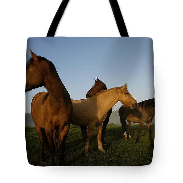 Criollo Mares Iv Tote Bag by Michael Mogensen