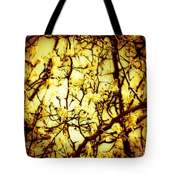 Tote Bag featuring the photograph Crip L by Robin Coaker