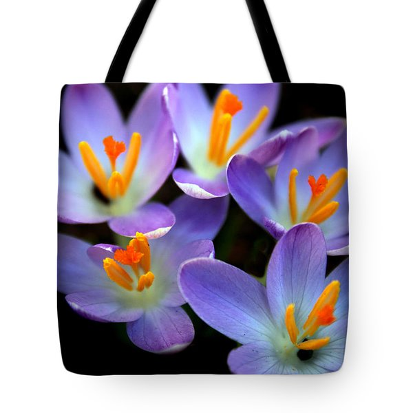 Tote Bag featuring the photograph Crocus Aglow by Jessica Jenney