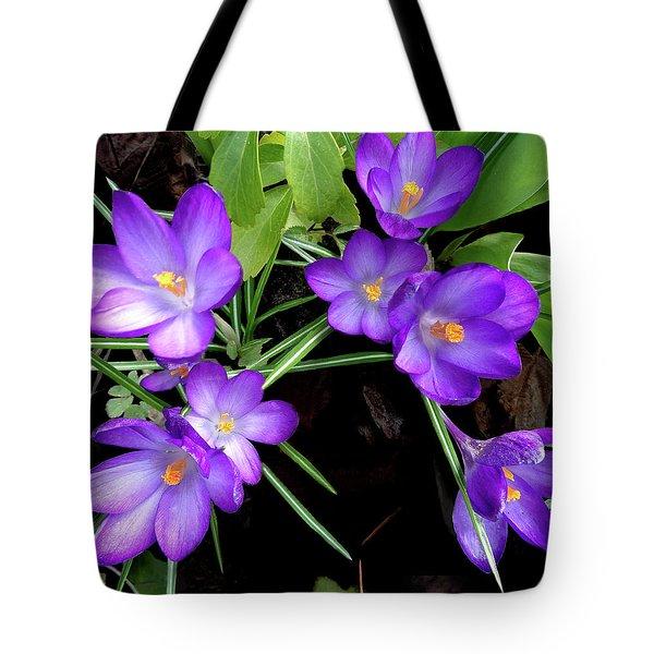 Crocus First To Bloom Tote Bag