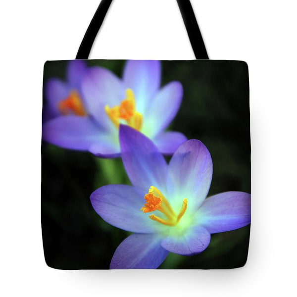 Tote Bag featuring the photograph Crocus In Bloom by Jessica Jenney