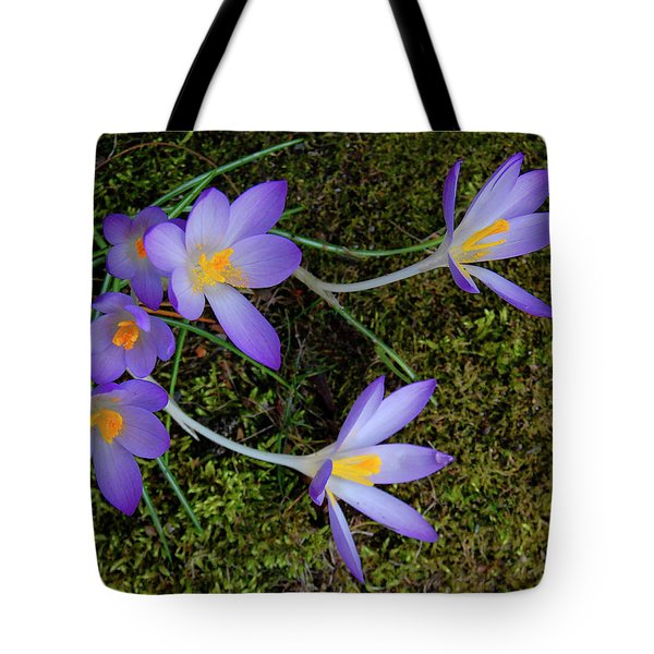 Tote Bag featuring the photograph Crocus Outreach by Roger Bester