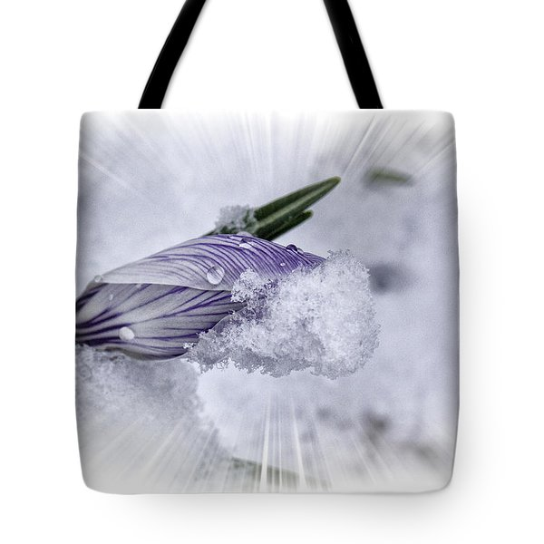 Crocus Pushing Through Snow Tote Bag