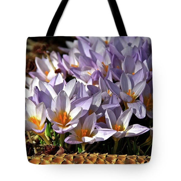 Crocuses Serenade Tote Bag by Ed  Riche