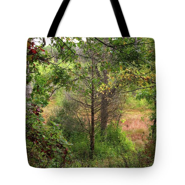 Tote Bag featuring the photograph Crooked Creek Woods by Kimberly Mackowski