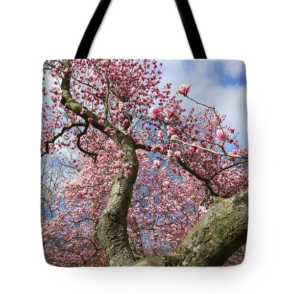 Crooked Magnolia Tote Bag