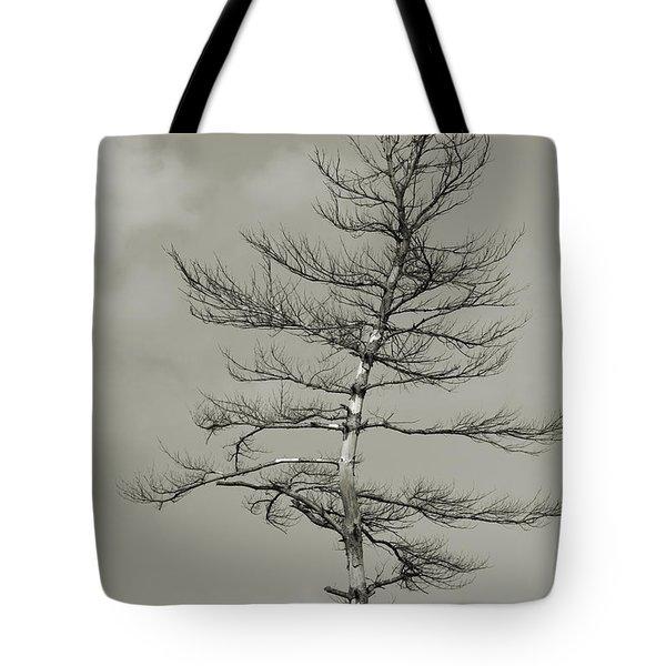 Crooked Tree Tote Bag