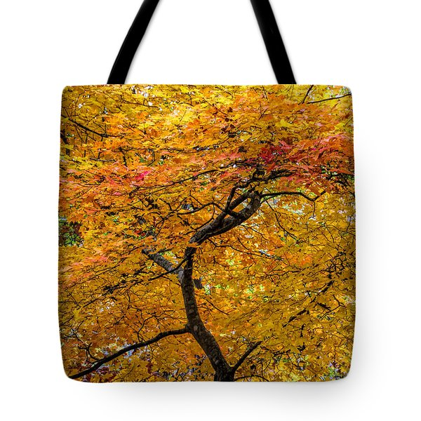 Tote Bag featuring the photograph Crooked Tree Trunk by Barbara Bowen