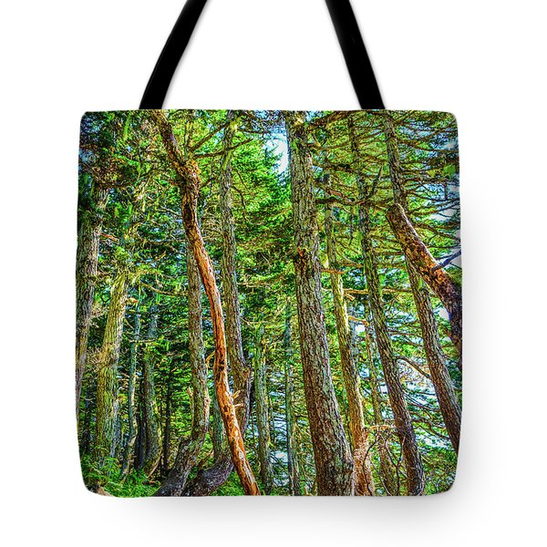 Crooked Trees Of Mt Roberts Tote Bag