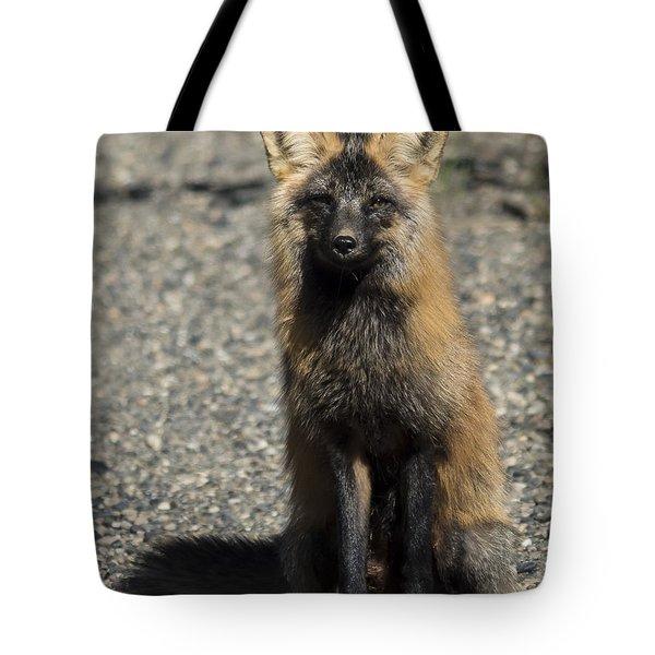 Cross-fox Wonder Tote Bag