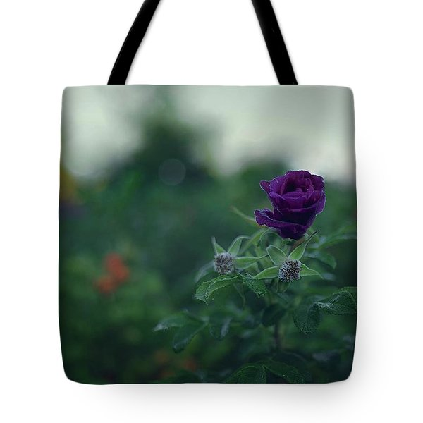 Cross-season Tote Bag