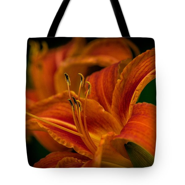 Crouching Tiger, Hidden Beauty Tote Bag