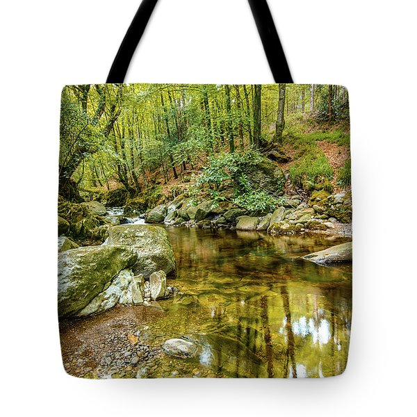 Crough Wood 1 Tote Bag