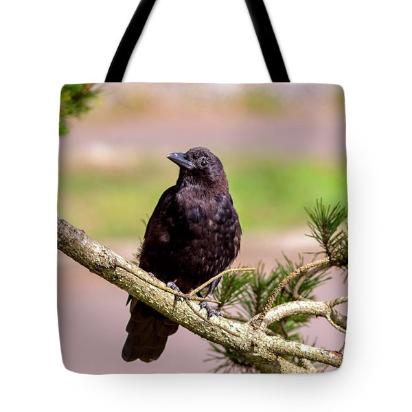 Tote Bag featuring the tapestry - textile Crow by Charlene Bucklin