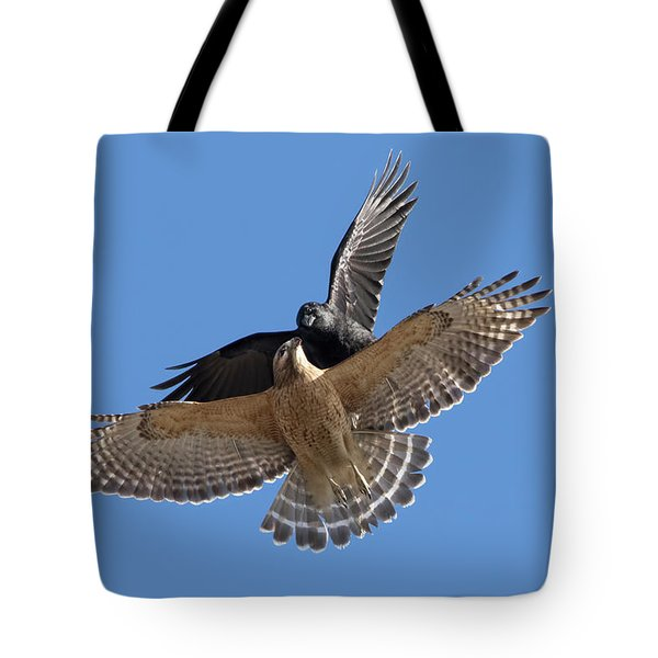 Tote Bag featuring the photograph Crow Vs Hawk by Mircea Costina Photography