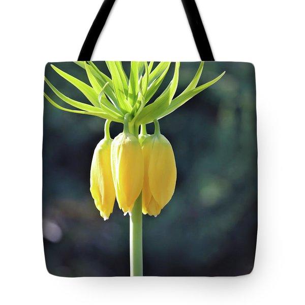 Crown Lily Tote Bag
