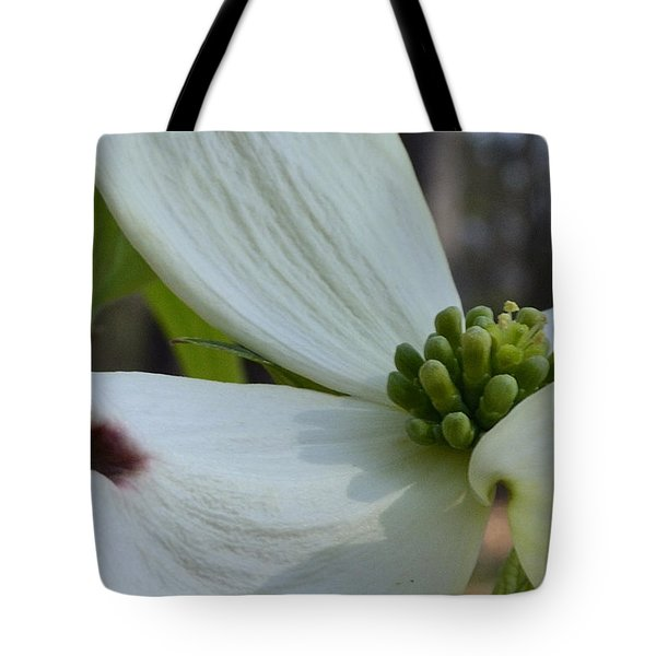 Crown Of Thorns Tote Bag by Larry Bishop