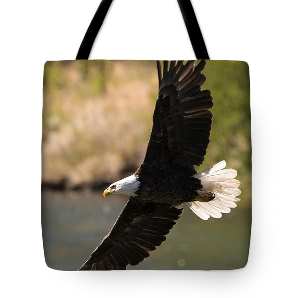 Cruising The River Tote Bag by Mike Dawson