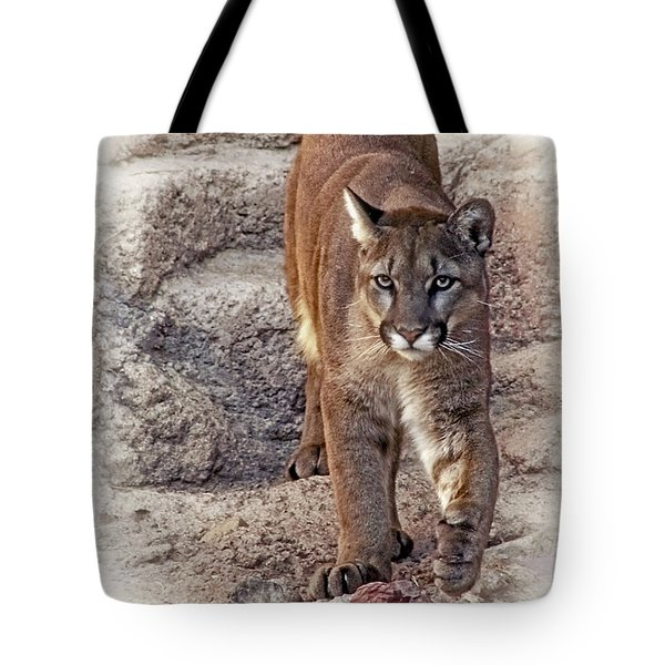 Tote Bag featuring the photograph Cruz Cruzin' by Elaine Malott