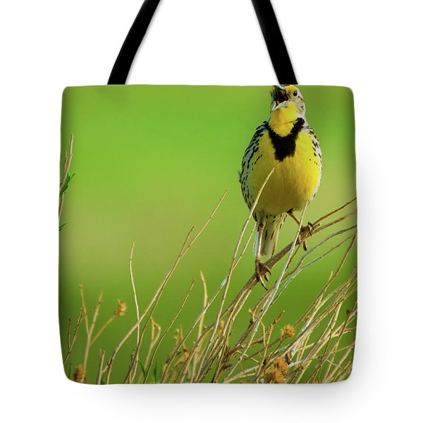 Tote Bag featuring the photograph Crying Out II by John De Bord