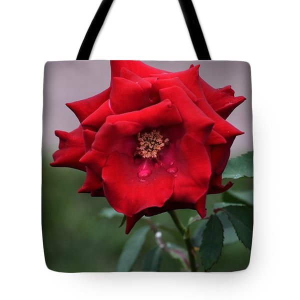 Crying Rose Tote Bag
