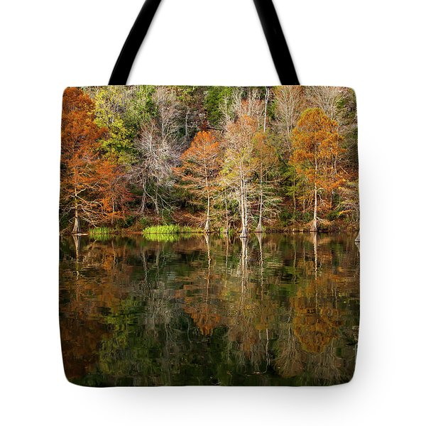 Tote Bag featuring the photograph Crystal Clear by Iris Greenwell