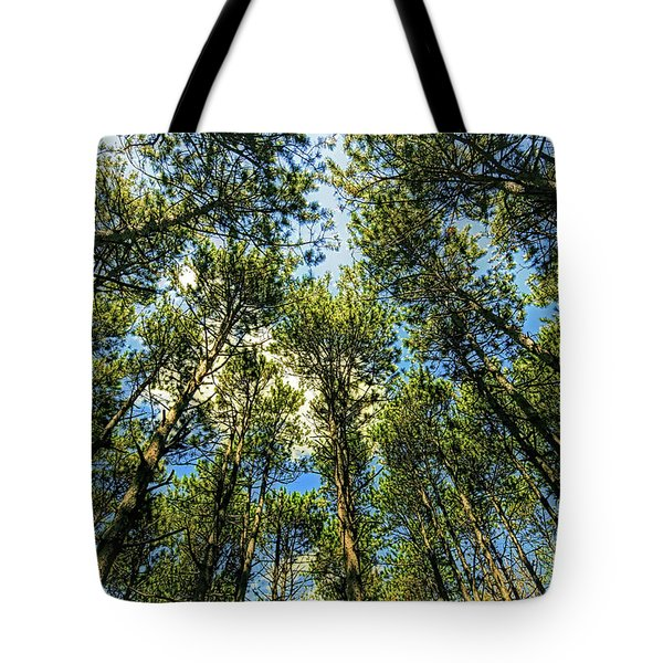 Tote Bag featuring the photograph Crystal Lake Il Pine Grove And Sky by Tom Jelen