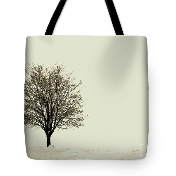 Crystal Lake In Winter Tote Bag by Desiree Paquette