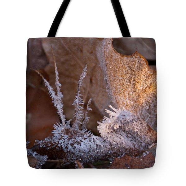 Crystaline Life Tote Bag by Douglas Barnett