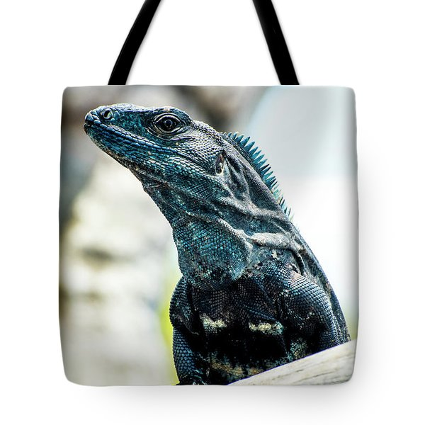 Tote Bag featuring the photograph Ctenosaura by David Morefield