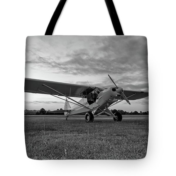 Cub At Daybreak Tote Bag
