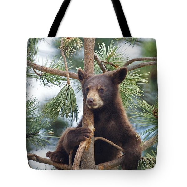 Cub In Tree Dry Brushed Tote Bag