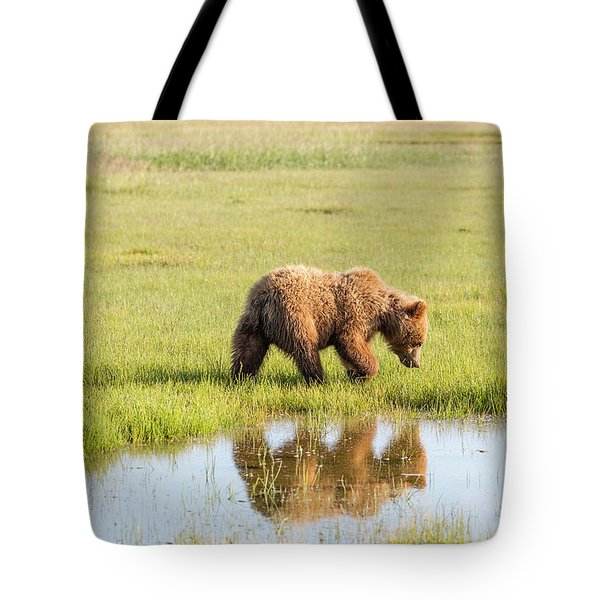 Cub Reflection Tote Bag