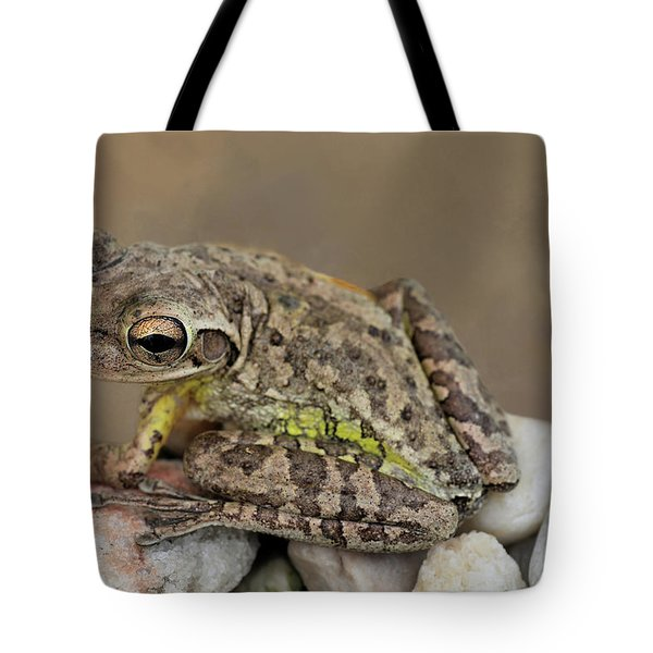 Tote Bag featuring the photograph Cuban Cutie by Donna Kennedy