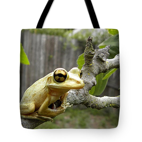 Cuban Tree Frog 001 Tote Bag by Chris Mercer