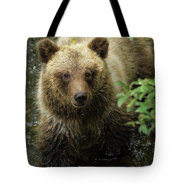 Cubby Tote Bag